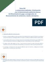 Derecho Procesal Civil III - Tema Xiii