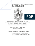 TL AcunaAlfaro RodasSalazar TorresAndagua-1