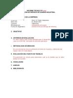 Ejemplo Informe Tecnico