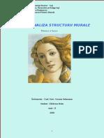 72689916-Analiza-structuri-murale.pdf