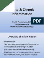 Inflammation & Immune Response