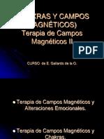300058087-CHAKRAS-y-campos-magneticos.pptx