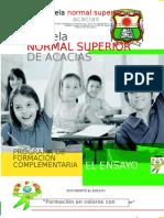 EL ENSAYO ENSA.docx