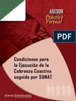 CONDICIONES PA RA LA EJECUCION DE LA COBRANZA COACTIVA SEGUIDA POR LA SUNAT.pdf