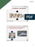 _FUERZAS_Y_ESFUERZOS.pdf