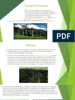 Diapositivas de Parque Nacional de Cutervo Exponer