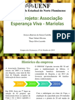 Análise de viabilidade_mariola (1)