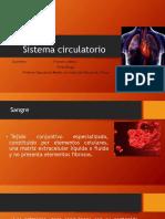 6.- Sistema Circulatorio