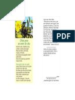 ABS05-Olhai_para_as_aves_do_c_u-normal_140_kb_.pdf
