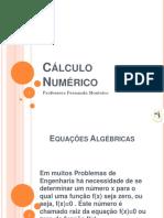 02- Equações Algébricas (1)