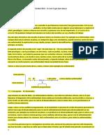96436167-Curso-Dr-Salomn-Transgeneracional.pdf