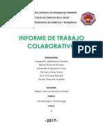 Informe de Trabajo Colaborativo SEGUNDA UNIDAD