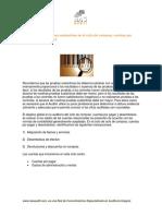 nasaudit-pruebas_sustantivas_ciclo_de_cuentas_por_pagar.pdf