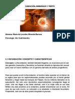 4.1 La Fecundación (Fichas)
