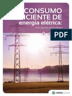 CEBDS_CONSUMO_EFICIENTE_DE_ENERGIA_ELÉTRICA-uma_agenda_para_o_brasil-NAVEGAVEL