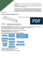 CARBON FORMACION Y SUS TIPOS.docx