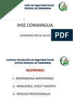 Presentacion Servicios Ihss Comayagua