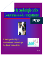 Psychologie Canine Et Comportement