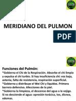 Funciones Del Pulmon