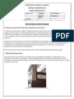 PATOLOGIAS-ESTRUCTURALES