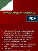 toxicacion Por Molibdeno