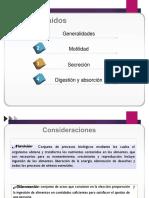 FISIOLOGIA DIGESTIVA CLASE 2.pdf