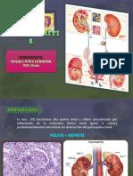 pielonefritis-150617045222-lva1-app6891 (1)