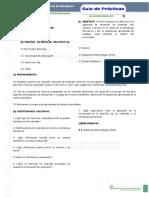 GUIA.PRACTICAS.LABORATORIO.BENEFICIO.DE.MINERALES.docx