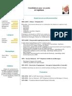 CV Simon Lopez_Saez_logistique.pdf