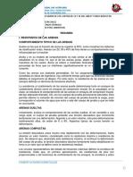Cimentaciones Especiales Resumen Imprimir