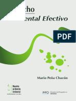 Derecho Ambiental Efectivo 1