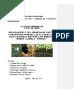 Perfil Proyecto Forestal (Reparado)