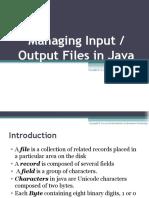 Input Output Files