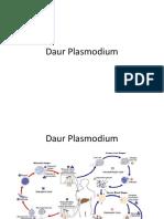 Daur Plasmodium.pptx