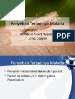 Penyebab Terjadinya Malaria.pptx
