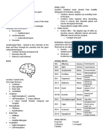Neurologic System Reviewer