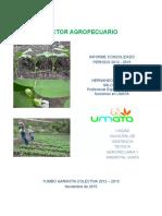 Informe UMATA Agropecuario