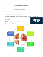 Cadena Epidemiológica (2 Ejemplos)