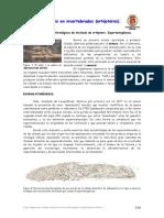 guion_practica1.pdf