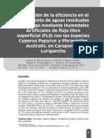 articulo carapongo.pdf
