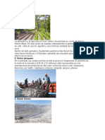 Fuentes Economicas de Guatemala