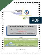Rapport DAudit Comptable Et Financier COLLECTIF 24