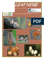 colour otoño 2012.pdf
