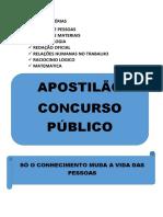 INDICE DE MATÉRIAS CAPA.pdf