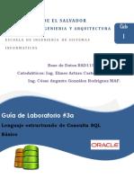 Guia03BAD115_SQLBasicoOracleV2