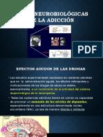 BASES NEUROBIOLÓGICAS DE LA ADICCIÓN.pptx