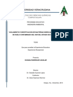 AISLAMIENTO E IDENTIFICACIÓN DE BACTERIAS HIDROCARBUROCLASTAS DE SUELO CONTAMINADO DEL SUR DEL ESTADO DE VERACRUZ