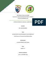 METODOS PERDIDAS DE CARGA.docx