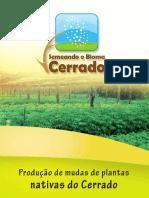5-producao-de-mudas-de-plantas-nativa-do-cerrado-150722180954-lva1-app6891.pdf