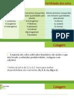 Fertilidade Do Solo Calagem PDF